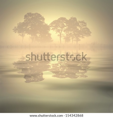 Beautiful foggy morning with silhouette of trees, reflected in a water - stock photo