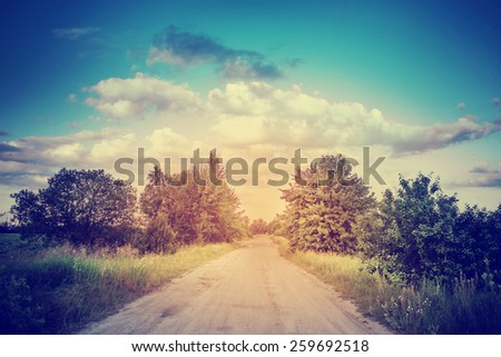 beautiful forest landscape with road in sunset - stock photo