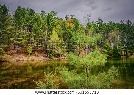 Beautiful forest reflecting on calm lake shore in Northern Ontario, Canada