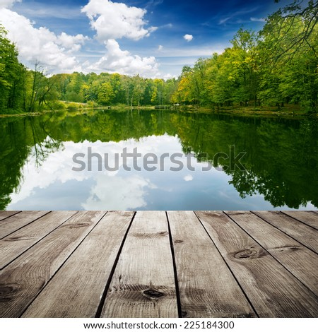 Beautiful forest with reflection in the water and wood planks. Beauty nature - stock photo