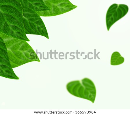 Beautiful fresh green leaves realistic background. Leaf border with space for text. Ecological green leafs concept with sharp and blurred parts. Spring summer mood. Light forest or park background. - stock photo