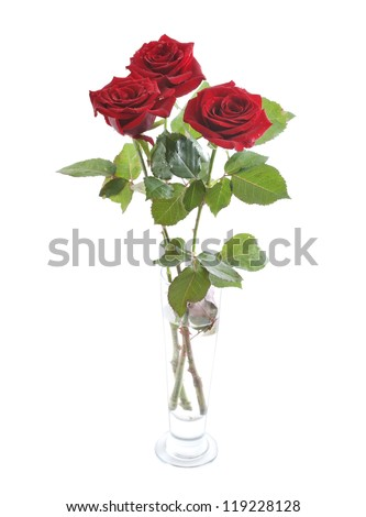 Beautiful fresh red roses in a glass vase isolated on white background - stock photo