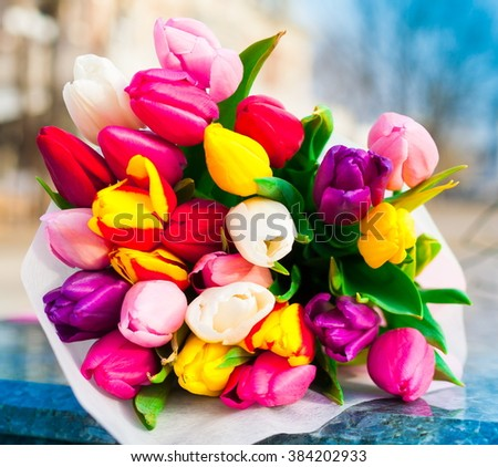 Beautiful fresh spring flowers multicolored tulips stock photo beautiful fresh spring flowers multicolored tulips bouquet the city background march 8 celebration mightylinksfo
