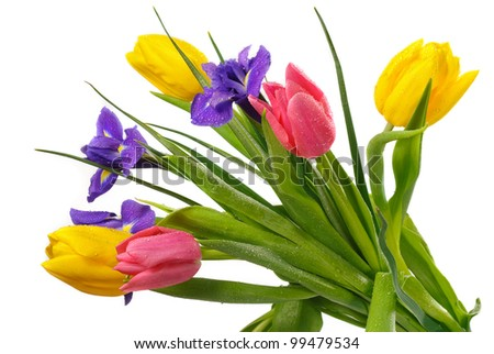 Beautiful fresh tulips with  iris flowers isolated over white