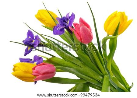 Beautiful fresh tulips with  iris flowers isolated over white - stock photo
