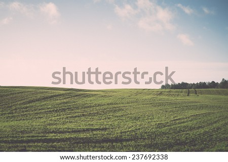 beautiful freshly cultivated green crop field in the countryside - retro, vintage style look - stock photo