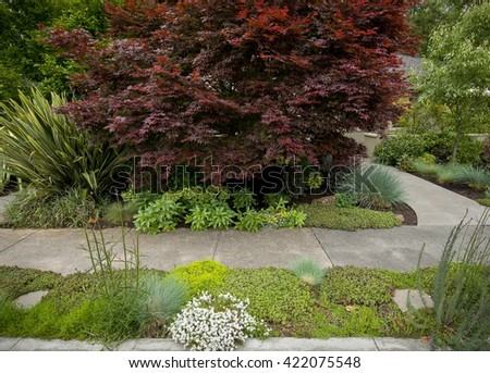 Beautiful front yard, showing sidewalk and path on right leading to house, lush landscaping - stock photo