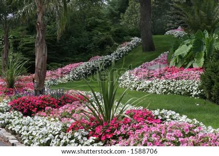 beautiful garden - stock photo