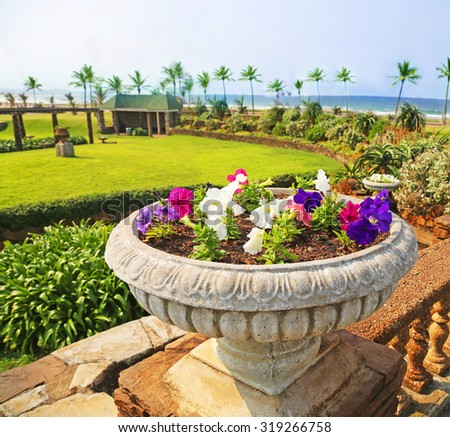 beautiful garden at the beach of Durban, South Africa. - stock photo