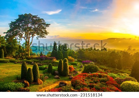 Beautiful garden of colorful flowers on hill with sunrise in the morning. - stock photo