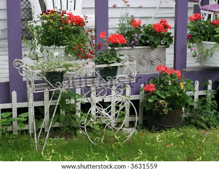 beautiful garden with planters filled with geraniums