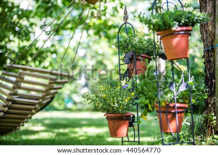 beautiful garden with pots and plants - stock photo