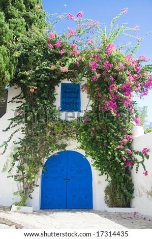 Beautiful gate of Sidi Bou Said,Tunisia - stock photo