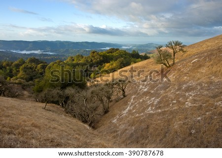 Beautiful gentle hillsides in California's Bay Area, after a light snowfall in winter