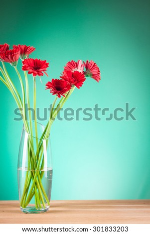 beautiful Gerbera on green background