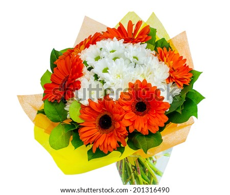 Beautiful gerberas on gray background - stock photo