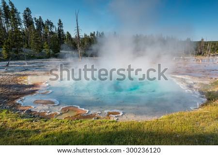 beautiful geyser in yellowstone national park ,Wyoming,usa. - stock photo