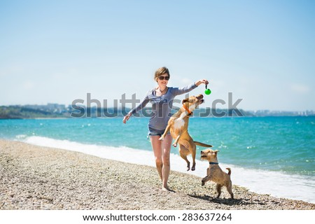 Beautiful girl in a blue blouse and shorts playing with dogs on the beach - stock photo