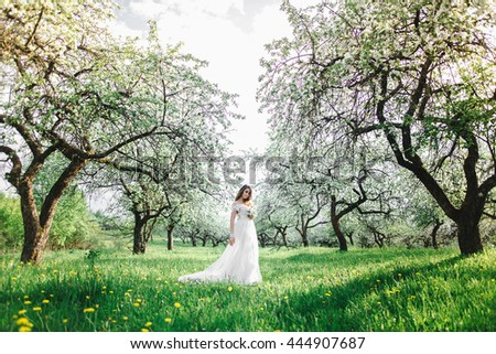 beautiful girl in the apple orchard