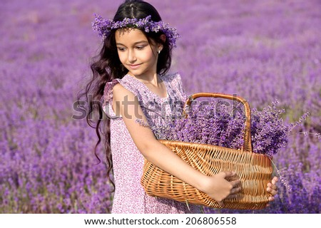 Beautiful girl in wreath on the lavender field. Girl with long hair collects lavender - stock photo