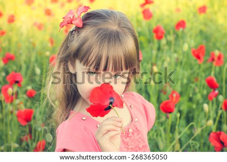 Beautiful girl smells the flower poppy. Toned image.  - stock photo