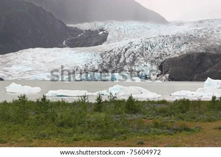 Beautiful glacier in Mendenhall National Park in Alaska - stock photo