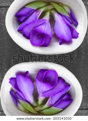 Beautiful gladiolus flower on vase on wooden background  - stock photo