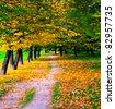 beautiful golden alley - stock photo