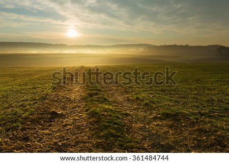 Beautiful Golden Sunrise over Foggy Field - stock photo