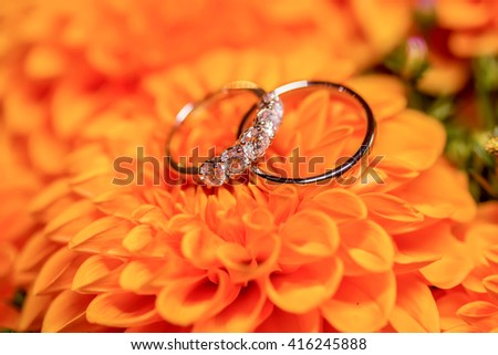 Beautiful golden wedding rings with diamonds on the orange flowers - stock photo