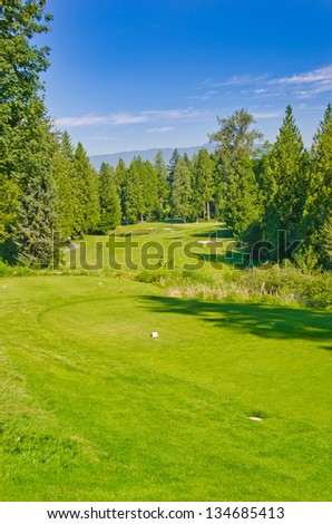Beautiful golf course in a bright sunny day.