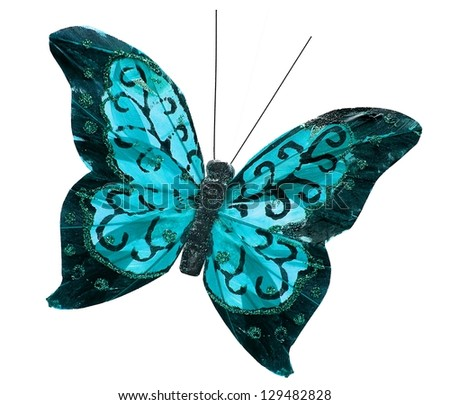 Beautiful gorgeous sea blue cyan butterfly insect, isolated on white background - stock photo