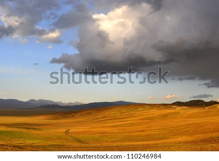 Beautiful Grassland