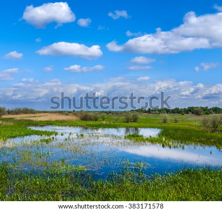 beautiful green flooded spring field - stock photo