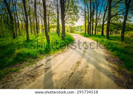 Beautiful Green Forest In Summer. Countryside Road, Path, Way, Lane, Pathway On Sunny Day In Spring Forest. Sunbeams Pour Through Trees. Russian Nature - stock photo