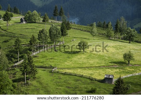beautiful green hills landscape, natural view of forest, landscape image