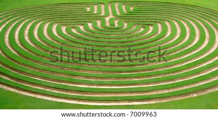 beautiful green lawn cut into a garden maze