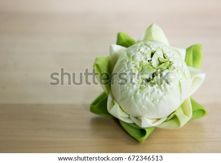 Beautiful green lotus flowers, petals folded artistically, on wooden background. The flower is a symbol of enlightenment in Buddhism.