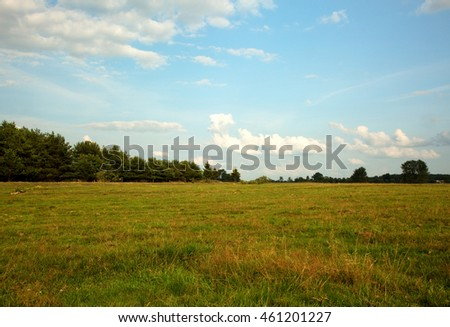 Beautiful green meadows in the summer in Poland, Podlasie District near Tykocin, blue sky with white clouds. Horizontal view.