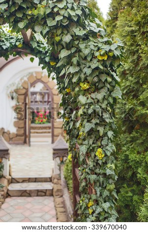 Beautiful green natural archway made of plants, daylight - stock photo