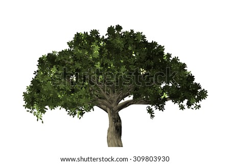 Beautiful green tree decor environment exterior digital isolated on a white background