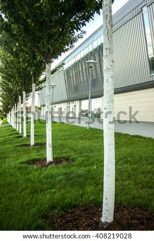 beautiful green trees lined on background of modern airport building  in urban city - stock photo