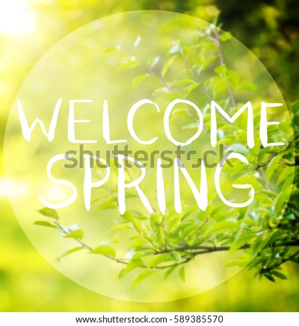 Beautiful greeting card words welcome spring stock photo edit now beautiful greeting card with words welcome spring m4hsunfo