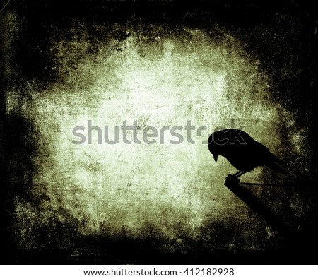 Beautiful grunge wallpaper with bird, abstract  background with faded central area for your text or picture