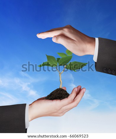 Beautiful hand tree - stock photo