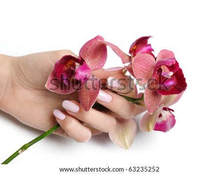 Beautiful hand with perfect nail pink manicure and purple orchid flower. isolated on white background - stock photo