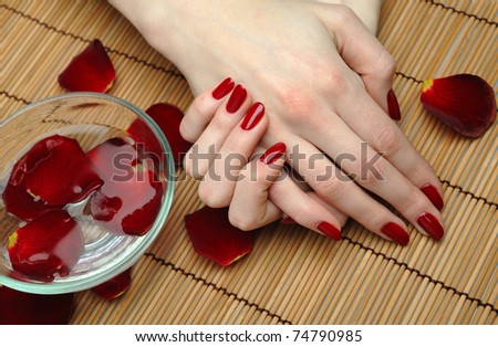 Beautiful hand with perfect nail red manicure and rose petals. - stock photo