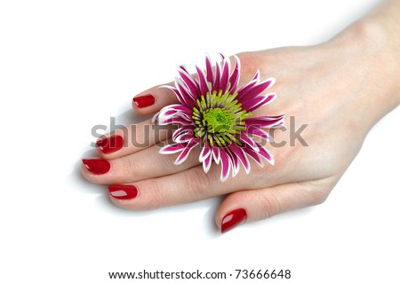 Beautiful hand with perfect nail red manicure and violet exotic flowers. isolated on white background - stock photo