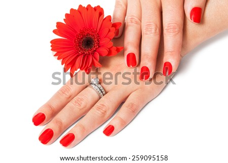 Beautiful hands of an elegant woman with fashionable red manicured nails, gemstone rings and a fresh red Gerbera daisy on a white background in a glamour and beauty concept