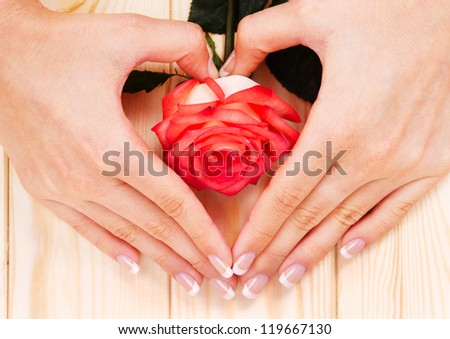 Beautiful Hands with Spa Manicure. Trendy Nails polish and Red Rose - stock photo